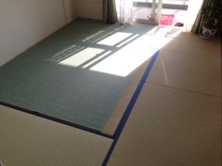 新しいからこそカーペット
