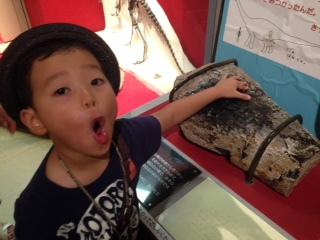 恐竜 自然史博物館 長居 自由研究