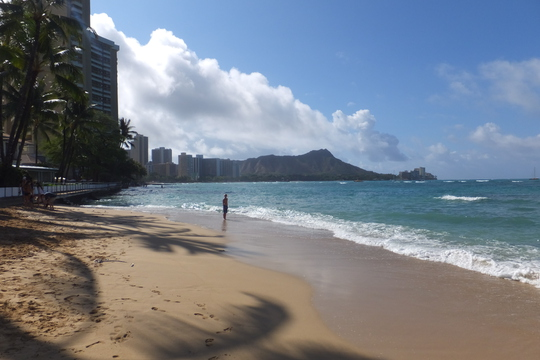 ワイキキ・アウトリガーリーフ 「ショアバード」 ハワイ珍道中 その8 ワイキキビーチを見ながらのモーニング!