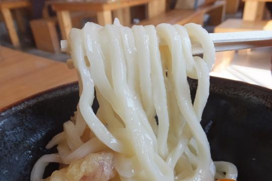 兵庫・加西 「がいな製麺所 加西店」 うどん巡礼5 第42弾 バター釜たまうどん!