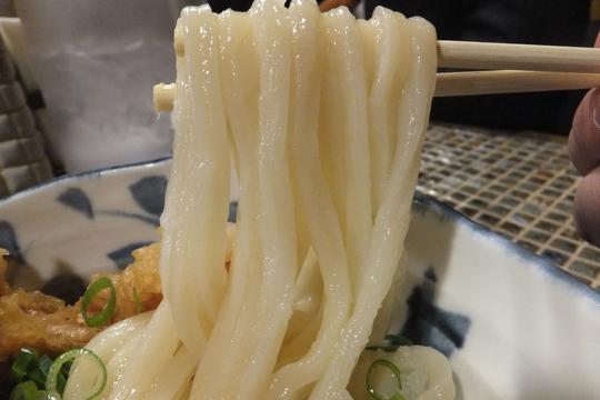 中津 「たけうちうどん店」 最強の鶏天が頂ける生醤油うどん!