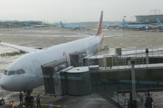 「アシアナ航空」 ハワイ珍道中 その2 アシアナ航空でハワイへGO!