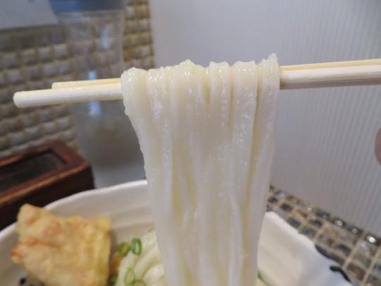 中津・豊崎 「たけうちうどん店」 最強の鶏天が頂ける生醤油うどん!