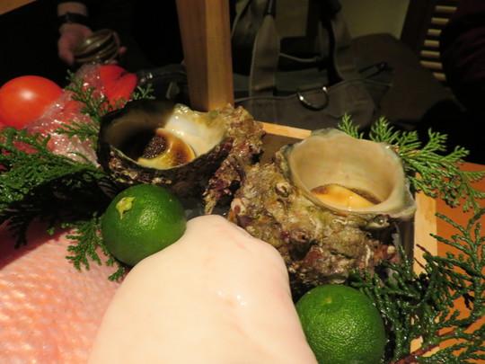 心斎橋 「寅八商店 心斎橋店」 抜群の泳ぎイカと鰹の藁焼きたたきが頂けます!