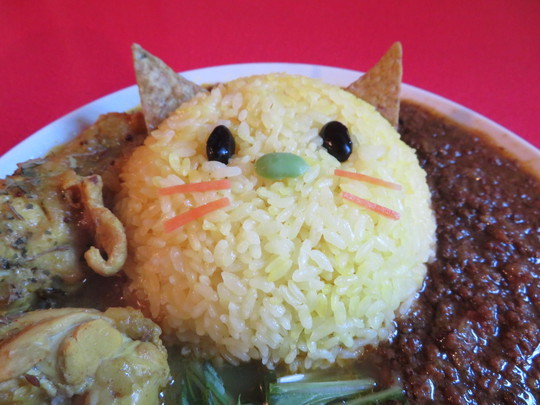 本町 「gato cruuy(ガトカリー)」 猫のライスが可愛いスパイスカレーのあいがけ!
