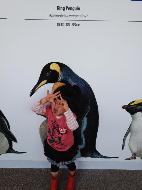 子どもと楽しめる「京都水族館」