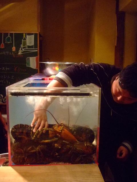 福島 「orb(オーヴ)」 でかいオマール海老をソファで頂く