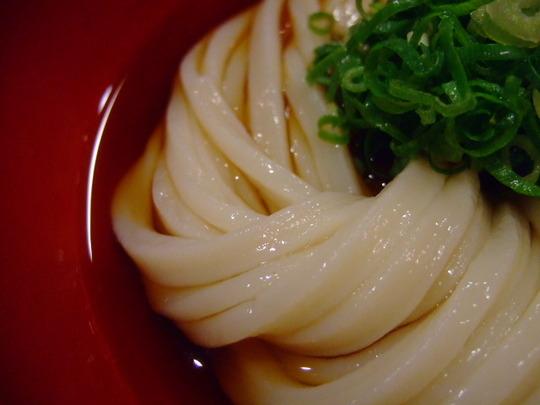 中津 「情熱うどん 讃州」 娘と夜の居酒屋遣いで晩ご飯!!!