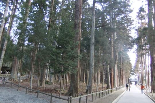 仙台珍道中1 松島 「まぐろ茶屋」 日本三景の元で桶ちらし!