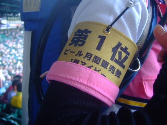 西宮・甲子園球場 「阪神 対 読売」 リベンジしてきました