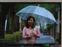 芦屋広報テレビの企画会議と新規のお問い合わせ 2013/11/18 23:55:22