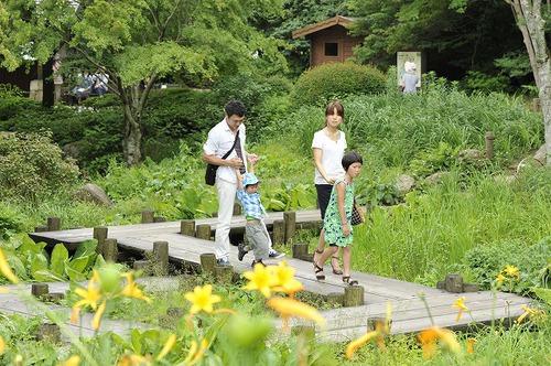 涼しくて爽快! 六甲高山植物園