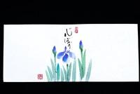 菖蒲(しょうぶ)