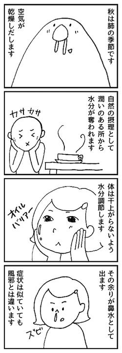 東洋医学 秋は肺 陰陽五行
