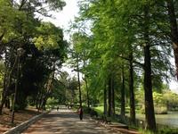 平成28年度総会を開催します!(5/14(土))