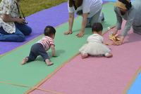 Lohas Kids Festaでも開催!「赤ちゃんハイハイレース」出場者募集!