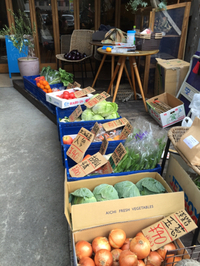 カフェで有機野菜販売