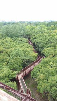 万博公園端から橋へ