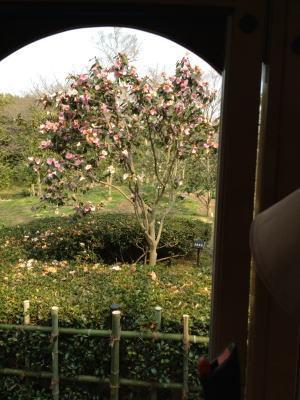万博‐日本庭園04