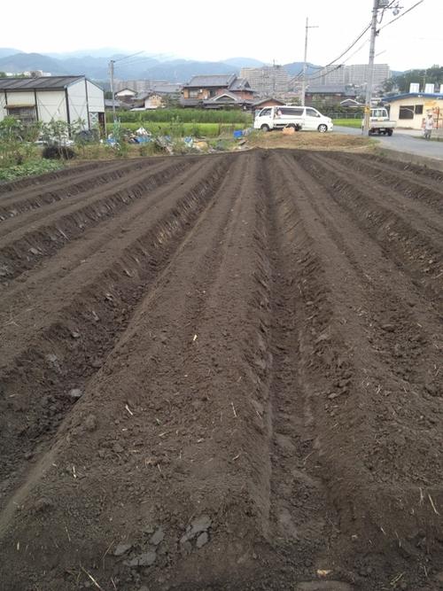やなもり農園苗植え付けevent開催します