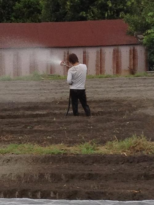 やなもり農園苗植え付けevent開催しました