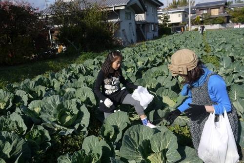 やなもり農園収穫祭~パーティー2012